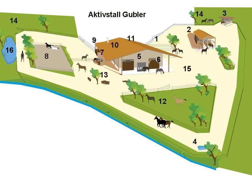 Aktivstall Gubler in Kienberg